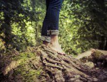 Naturally inspired flooring, courtesy of UK manufacturer Woodpecker Flooring